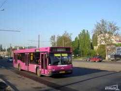 Сколько в Одессе маршруток и автобусов (ИНФОГРАФИКА)