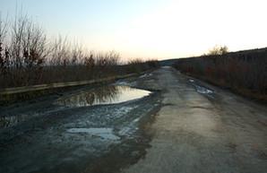 """Как депутат облсовета от """"Оппоблока"""" ремонтирует дороги в Одесской области: ямы, колдобины и лужи (ФОТО)"""
