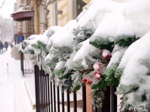 В Одессе ограничивают работу транспорта