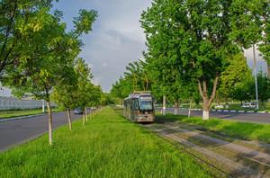 2 мая столица Узбекистана ликвидировала электротранспорт (ФОТО)