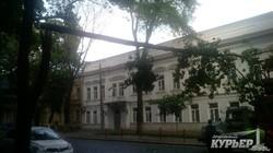 В центре Одессы упавшее дерево остановило движение троллейбусов (ФОТО)
