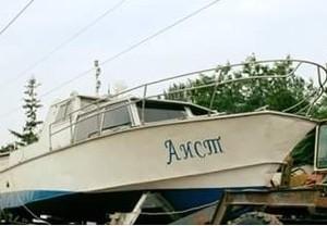 "На Дунае появился ""Аист"""