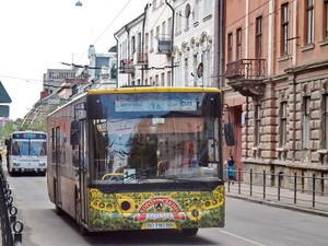 Вместо восьми газовых автобусов в Мариуполь будут покупать 15 дизельных