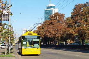 Донецкая ОГА не смогла закупить троллейбусы для Мариуполя