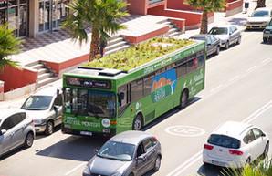 В Мадриде на крышах общественного транспорта будут выращивать сады