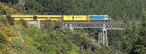 Железные дороги Новой Зеландии переходят на дизельные локомотивы