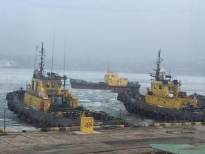 """В порту """"Черноморск"""" объявили ледовую кампанию"""