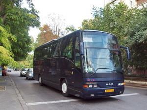 Киев, Львов, Одесса, Затока и Днепр: стало известно, куда украинцы чаще всего ездят на автобусах