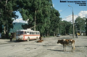 Статистика электротранспорта: в XXI веке троллейбус проигрывает трамваям и электробусам (ФОТО)