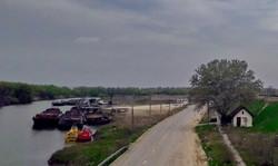 Баржи на берегу реки Прут грузят зерном прямо с автомобилей, порт Джурджулешты