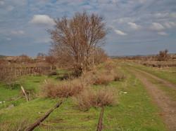 Конец пути: дальше тупик в непролазной грязи