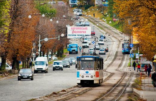 Во Львове хотят сделать зеленые трамвайные пути