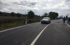 На трассе Одесса - Рени открыли объездную дорогу около Паланки (ФОТО)