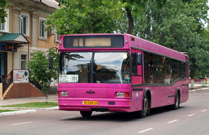 "В Кропивницкий поставят два десятка автобусов ""МАЗ-103"""