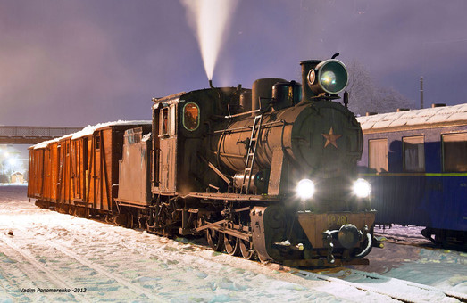 Ретро-поезд на узкоколейке в Закарпатье запустят в августе