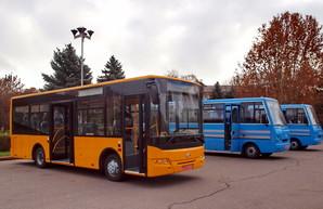 Житомир закупает 40 автобусов для коммунального предприятия за 124 миллиона