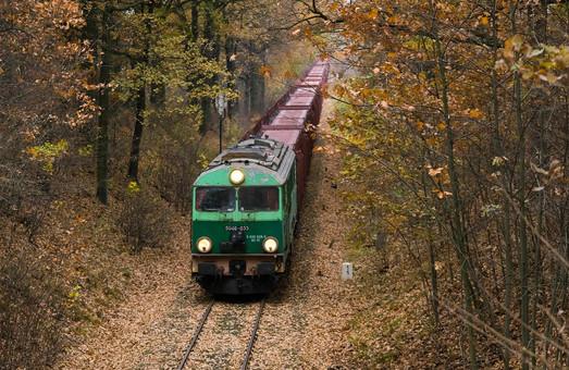 В Польше простаивают десятки тысяч грузовых вагонов компании, которой раньше руководил Балчун