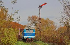 На уникальной узкоколейке в Закарпатье может прекратиться движение поездов