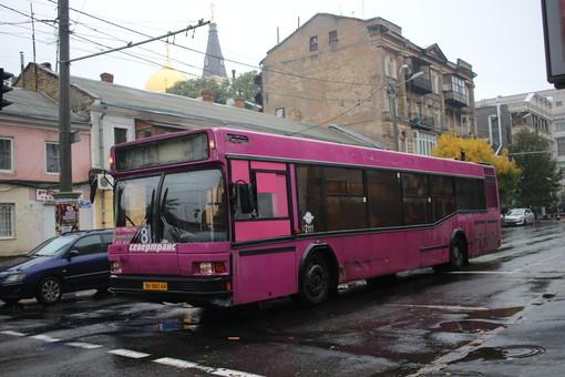 Как в Одессе в январе будут ходить автобусы для пассажиров с ограниченными возможностями