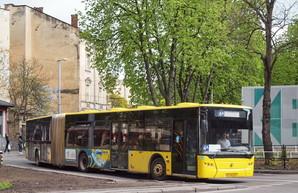 Во Львове арестовали муниципальный автобусный парк