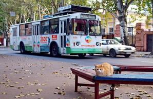 Электронный билет для Одессы: перевозчикам будут платить за рейсы, а не за пассажиров