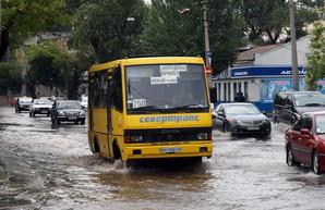 Одесситы смогут отслеживать движение городских автобусов в режиме онлайн