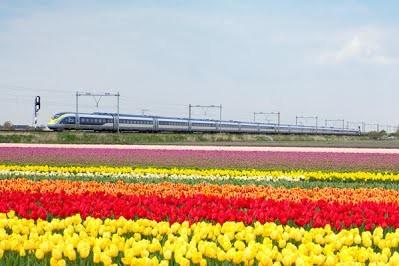 Между Лондоном и Амстердамом запустят прямой высокоскоростной поезд