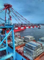 Порт под Одессой принял первый регулярный рейс Maersk (ФОТО)