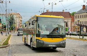 Запорожье не смогло взять в лизинг городские автобусы