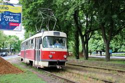 Фото дня: как одесские трамваи едут на Фонтан через заросли