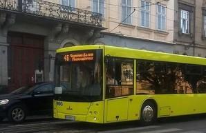 Первые белорусские автобусы уже вышли на улицы Львова