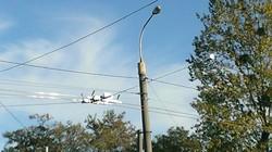 Во Львове закончили строительство маневровой троллейбусной линии