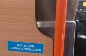 В Киеве появились маршрутки с местами для собак