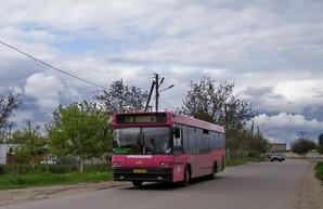 Как в феврале будут ходить одесские автобусы, приспособленные для пассажиров с ограниченными возможностями