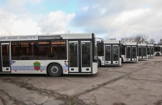 В Запорожье муниципальные автобусы большого класса выйдут еще на один маршрут