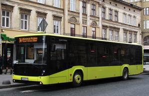 Во Львове в коммунальных автобусах появятся кондукторы-контролеры