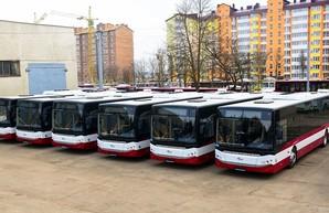 Новые турецкие автобусы уже в Ивано-Франковске: как они выглядят