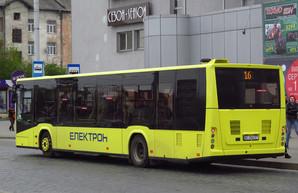 Львовские транспортные чиновники не следят за изменениями законодательства