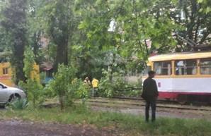 Из-за ночной непогоды в Одессе возникли проблемы с движением трамвая