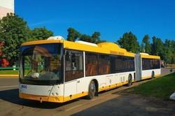 Как выглядят новые автобусы для Мариуполя (ФОТО)