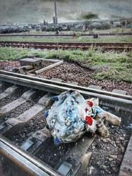 Из-за игрушки, брошенной на путях, машинист поезда «Интерсити+» Киев – Запорожье применил экстренное торможение