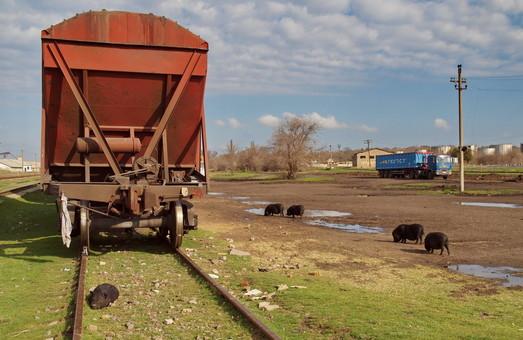 Военная прокуратура уличила в коррупции сотрудников Одесской железной дороги