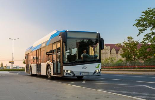 30 польских электробусов поедут в Венецию