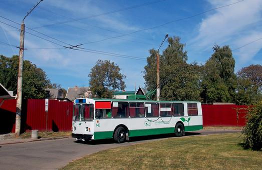 В Луцке могут появиться частные троллейбусы