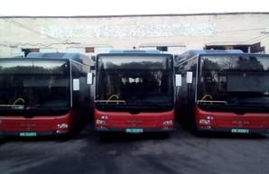 На балансе «Тернопольэлектротранса» уже 24 автобуса большого класса
