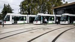 В французском Авиньоне снова работает трамвай