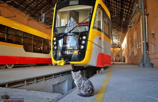 Одесский горсовет утвердил договор о кредите на закупку многосекционных трамваев