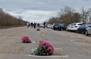 Жители Одесской области отметили выбоины на трассе между Беляевкой и Теплодаром букетами цветов