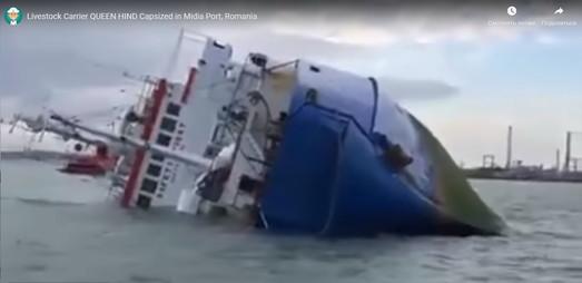Шторм утопил не только танкер в Одессе, но и судно-скотовоз у берегов Румынии (ВИДЕО)