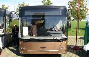 На автобусных маршрутах Тернополя появятся белорусские автобусы